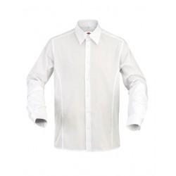 Shirt Pesaro Man