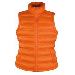 Womens Ice Bird Padded Gilet